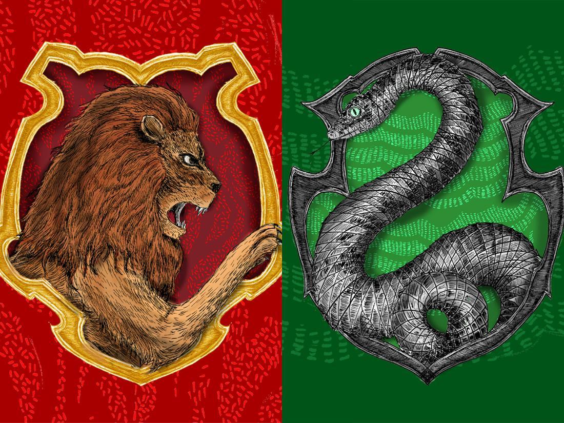 Die Wappen der Häuser Gryffindor und Slytherin