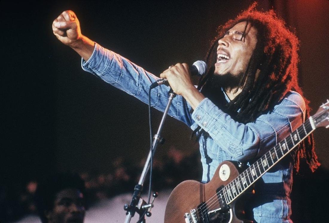 """Desis bobmarleyi erhielt ihren Namen vom Bob-Marley-Song """"High Tide or Low Tide"""", da sie in einem Lebensraum mit Gezeitenwechsel vorkommt."""