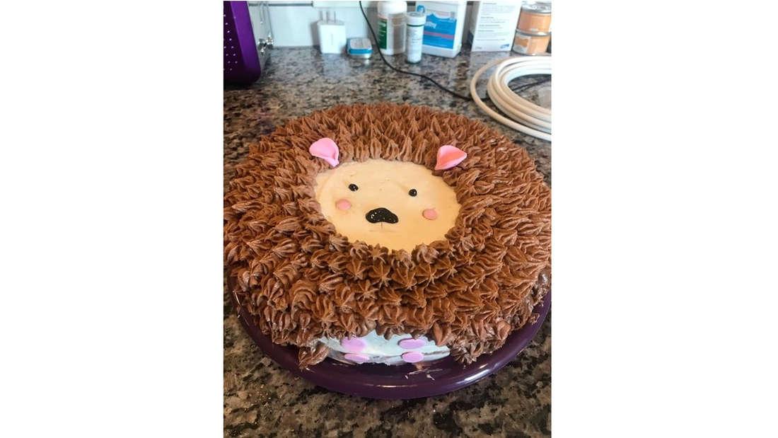Kuchen, der aussieht, wie ein Igel