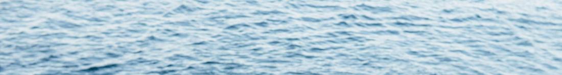 Das Meer.