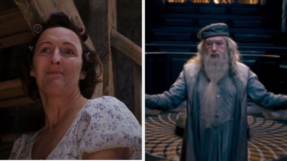 """Petunia scolding Hagrid in """"Sorcerer's Stone"""" and Dumbledore speaking at Harry's hearing in """"Order of the Phoenix"""""""