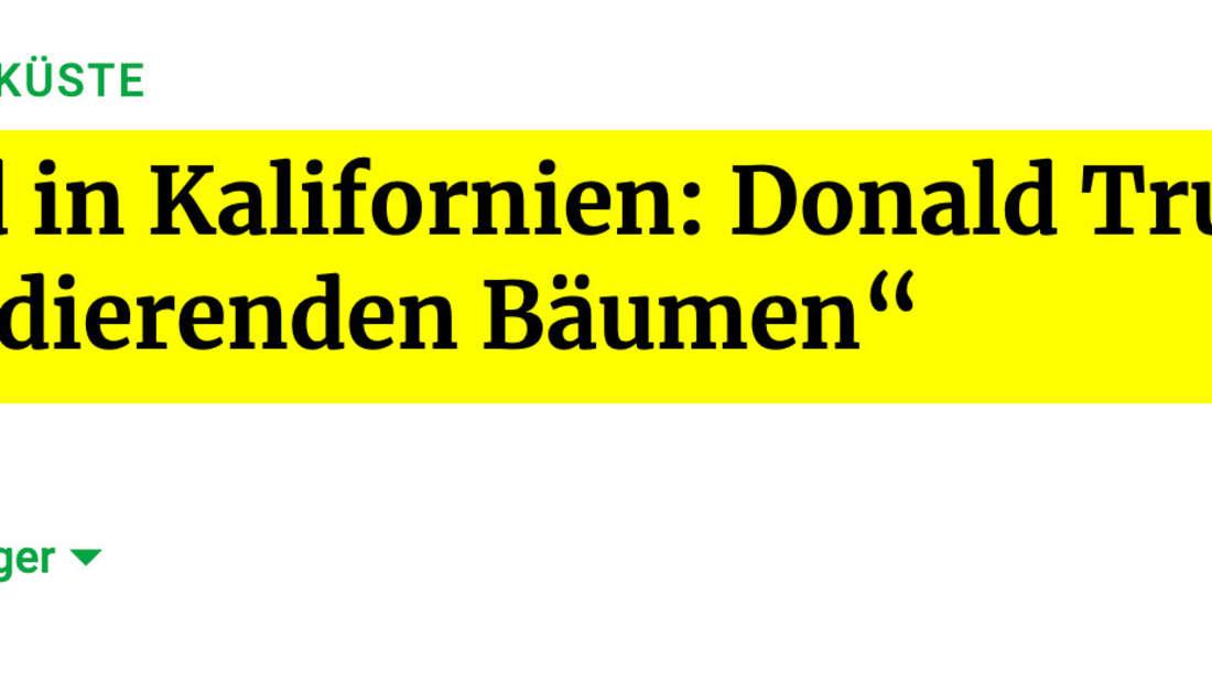 """Frankfurter Rundschau: Waldbrand in Kalifornien: Donald Trump warnt vor """"explodierenden Bäumen"""""""