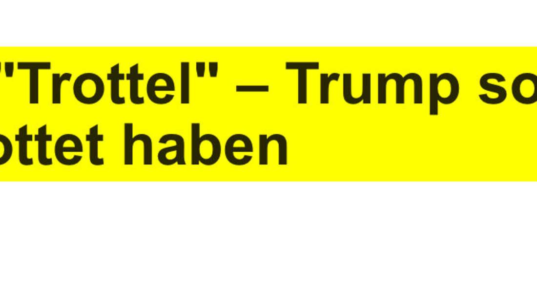 """T-Online: """"Verlierer"""" und """"Trottel"""" – Trump soll gefallene US-Soldaten verspottet haben"""