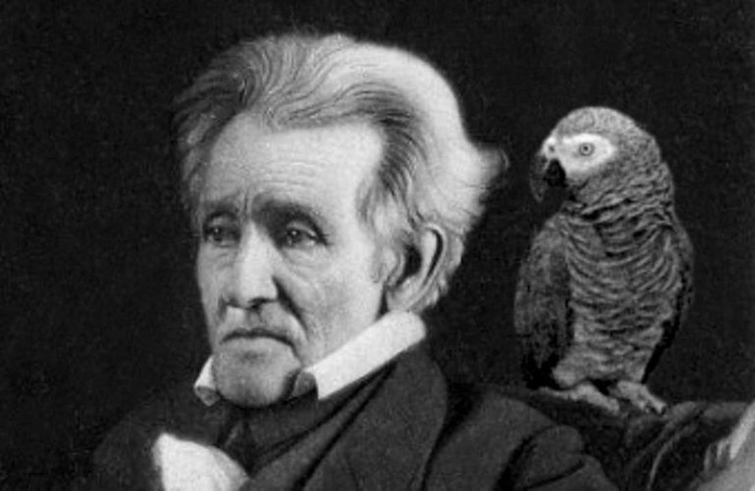Ein Schwarz-Weiß-Foto von Präsident Andrew Jackson, mit seinem Papagei Polly auf der Schulter.