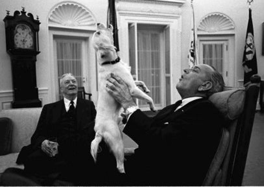 Auf einem Schwarz-Weiß-Foto hält Präsident Johnson seinen Welpen Yuki, während beide einem Gast im Oval Office etwas vorsingen.