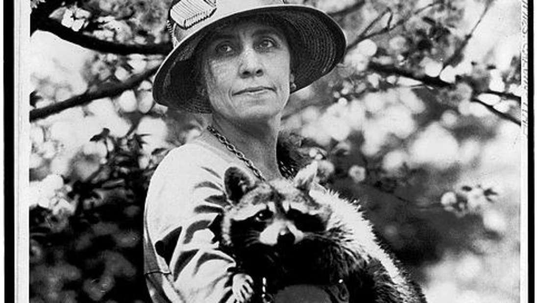 Ein Schwarz-Weiß-Foto auf dem First Lady Grace Coolidge ihr Haustier - den Waschbären Rebecca - im Arm hält.