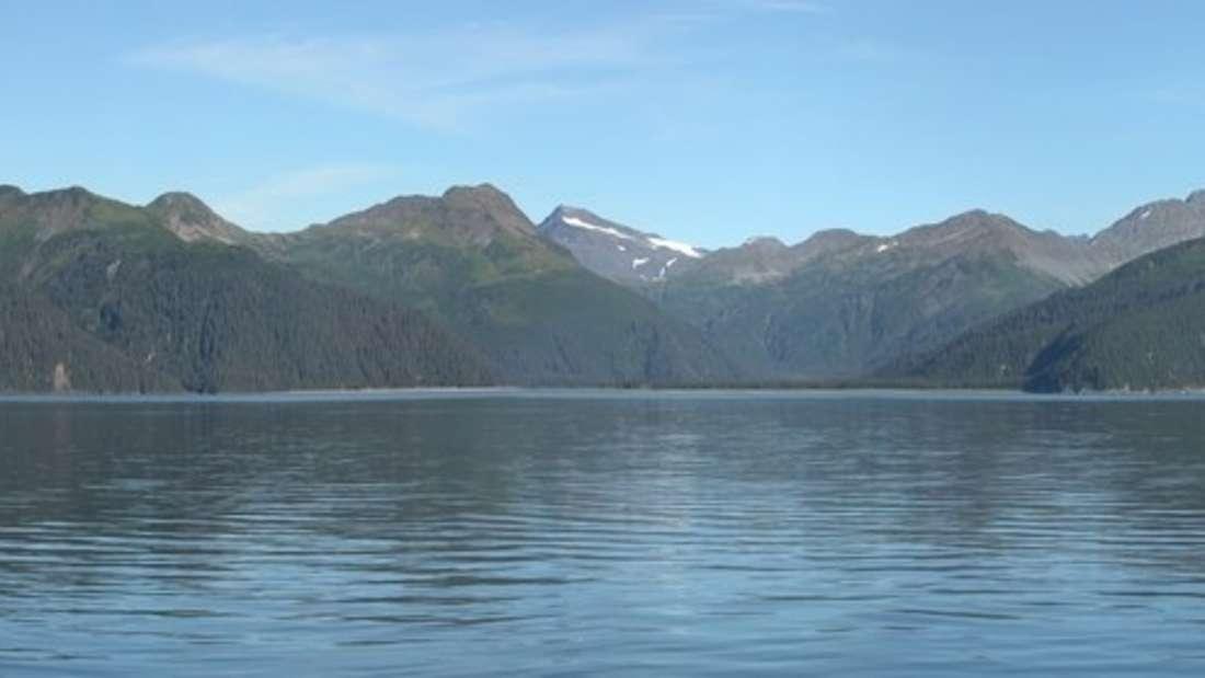 2004 hatte sich der McCarty-Gletscher bereits um 15 Kilometer zurückgezogen.