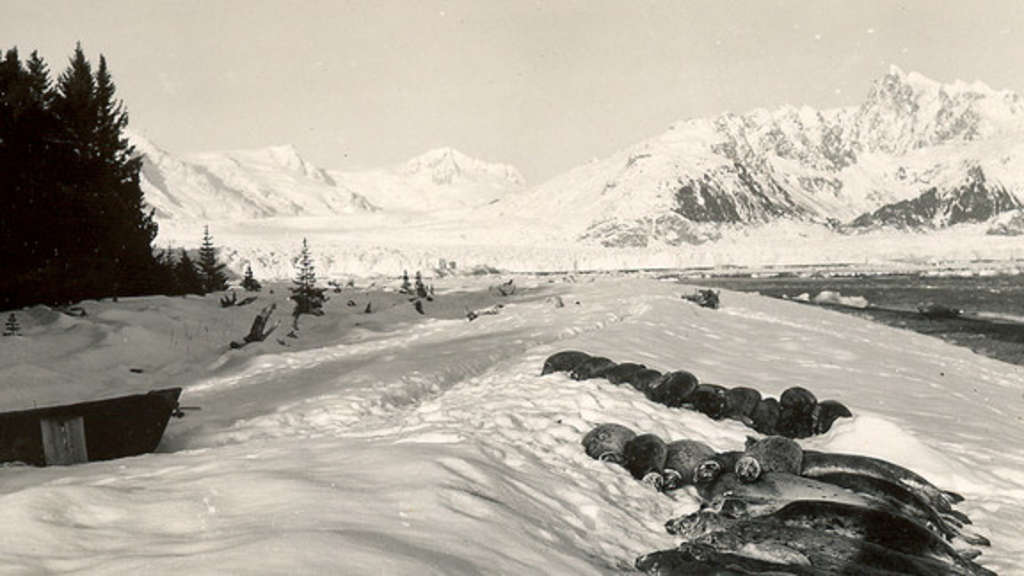 Harris Bay, Kenai Fjords National Park, 1920-40