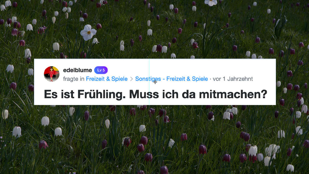 """Ein Screenshot von der Frage von edelblume, die die Yahoo! Clever-Community fragt: """"Es ist Frühling. Muss ich da mitmachen?"""" Der Hintergrund zeigt eine Blumenwiese mit Frülingsblumen."""