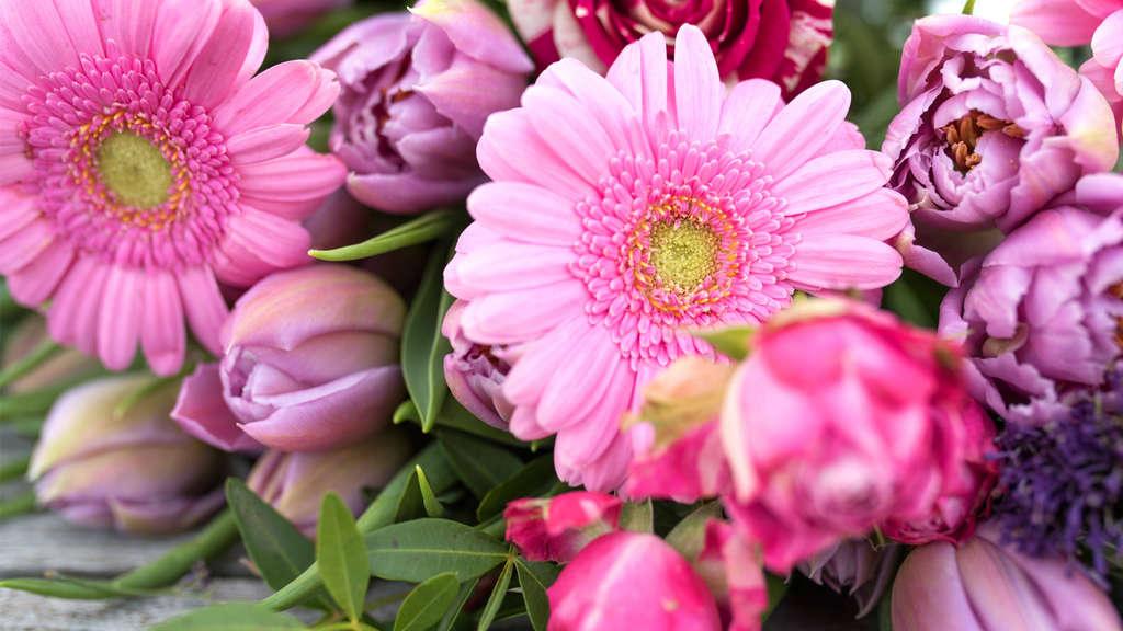 Ein Blumenstrauß mit Blumen in lila, pinken und rötlichen Farben.