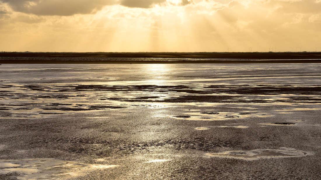 Sandbank mit Watt am Strand von Borkum, die durch die Sonne erhellt wird.