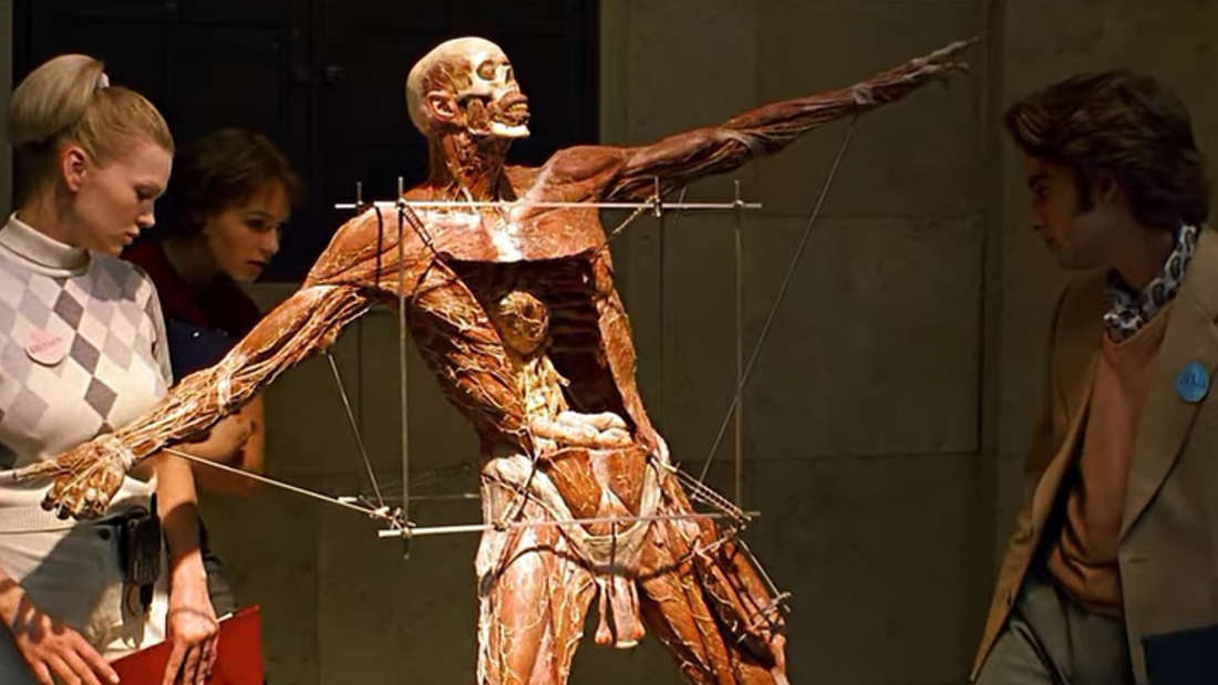 """Anatomie auf Netflix: Eine Ausstellung ähnlich der """"Körperwelten"""" zeigt einen gehäuteten Menschen und Besucher:innen, die ihn betrachten."""