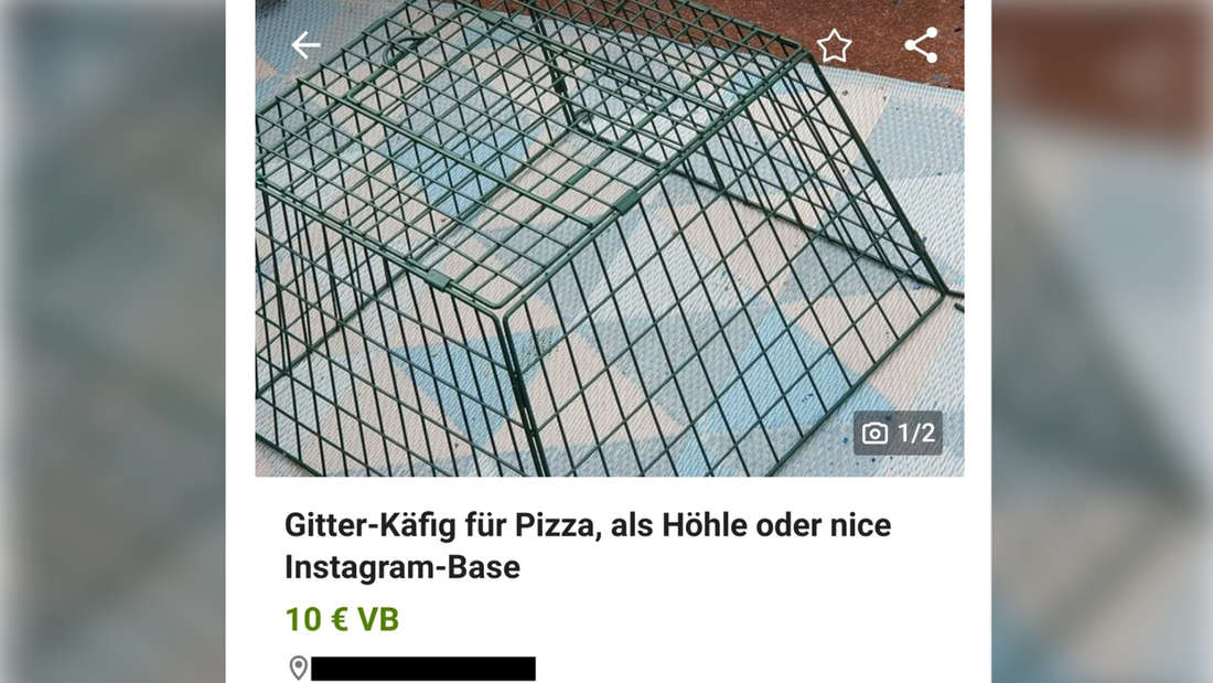 """Ein Bild von einer Anzeige von einem Gitterkorb auf eBay Kleinanzeigen. Er wird in der Anzeigenüberschrift beschrieben als """"Gitter-Käfig für Pizza, als Höhle oder nice Instagram-Base."""