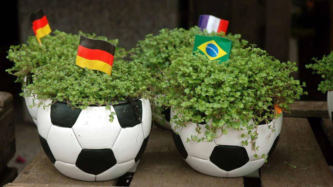 Zwei Pflanzenkübel, die aussehen wie Fußbälle, in denen Pflanzen wachsen und mehrere Fahnen mit verschiedenen Länderfarben drinstecken.