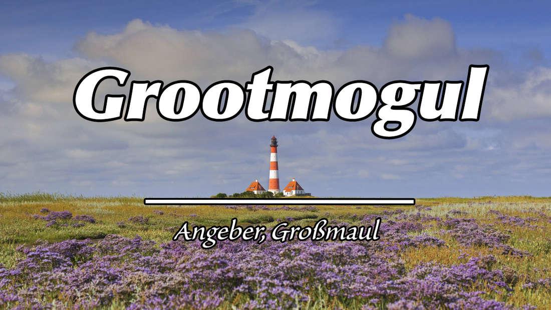 """Wattenmeer Nationalpark in Ostfriesland mit Leuchtturm und Blumenfeld. Auf dem Bild steht """"Grootmogul"""". Darunter als Erklärung """"Angeber, Großmaul""""."""