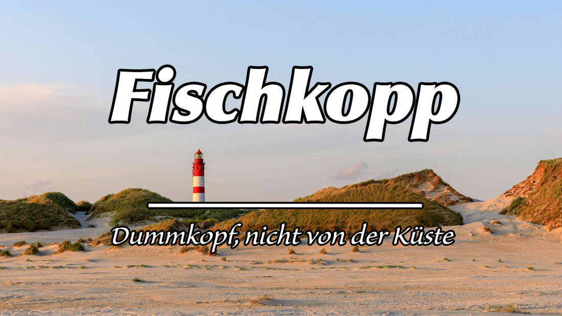 """Leuchtturm und Dünen auf der Insel Amrum. Auf dem Bild steht """"Fischkopp"""". Als Erklärung steht """"Dummkopf, nicht von der Küste""""."""