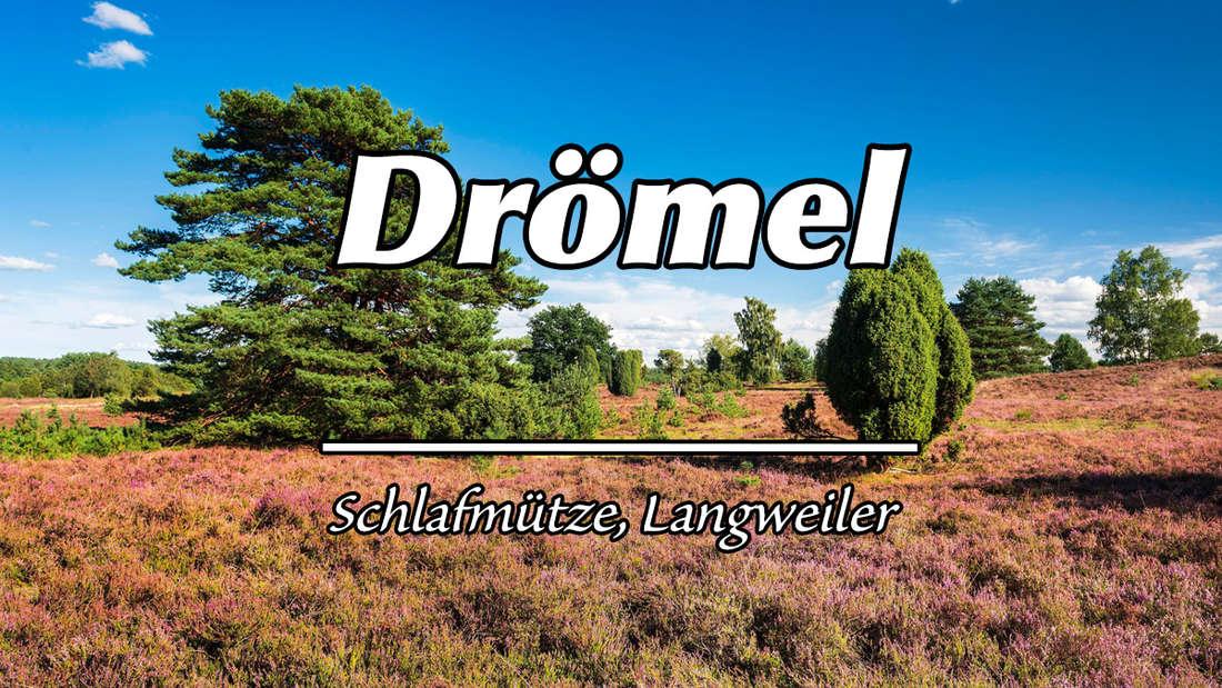 """Landschaft in der Lüneburger Heide. Auf dem Bild steht """"Drömel"""". Als Erklärung steht """"Schlafmütze, Langweiler""""."""