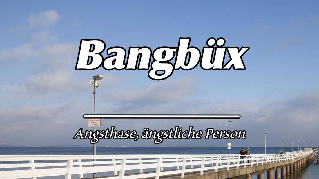 """Seebrücke am Timmendorfer Strand. Auf dem Bild steht """"Bangbüx"""". Darunter als Erklärung """"Angsthase, ängstliche Person."""""""
