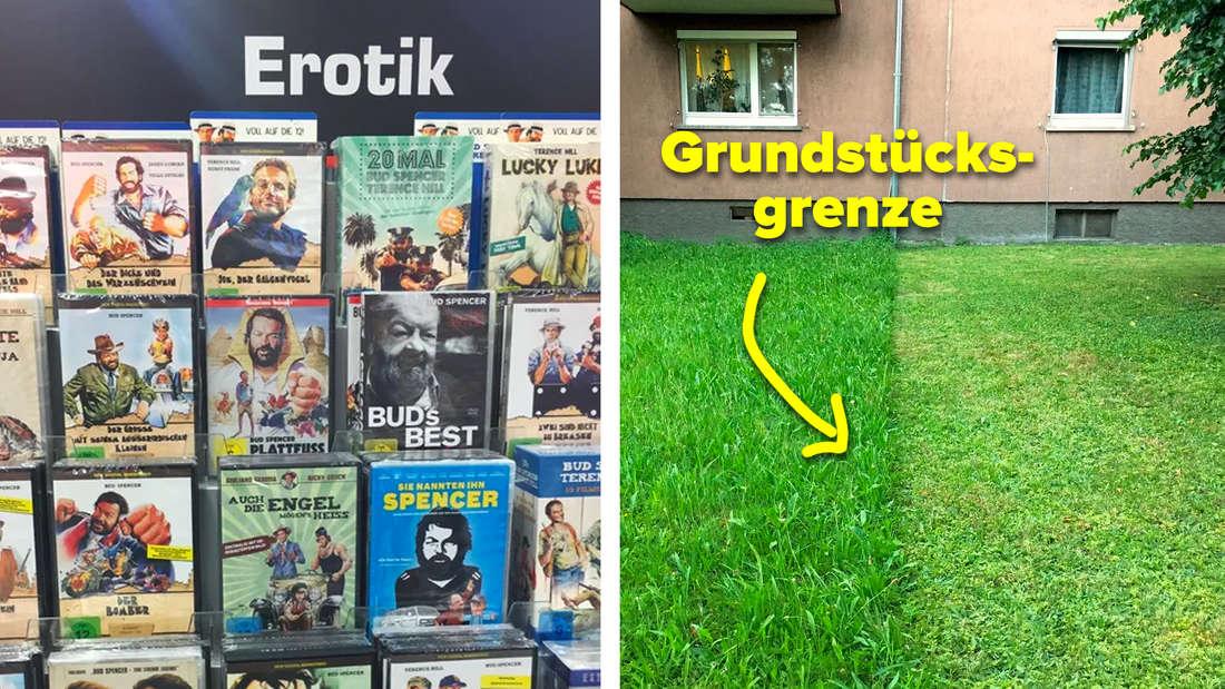 """Ein zweigeteiltes Bild. Links: Ein DVD-Regal bei Saturn mit der Überschrift """"Erotik"""", aber alle DVDs sind Filme mit Bud Spencer & Terrence Hill. Rechts: Eine Rasenfläche vor einem Doppelhaus und der Rasen ist nur auf einer Seite genau bis zur Grundstücksgrenze gemäht."""