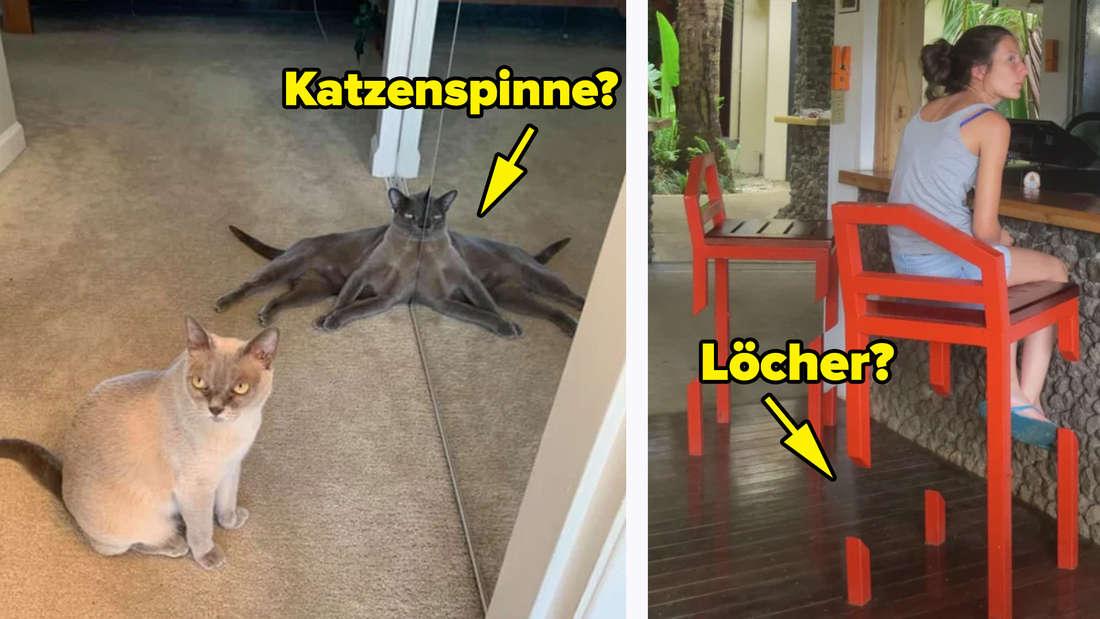 Eine Katze, die so hinter einem Spiegel liegt, dass sie aussieht, als würde sie acht Beine haben. Text: Katzenspinne? Daneben ein Stuhl, der mehrere Löcher hat. Text: Löcher?