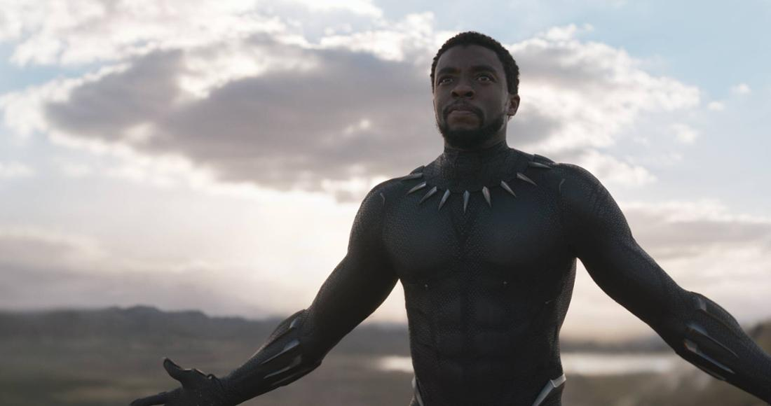 "Chadwick Boseman als T'Challa in ""Black Panther"""