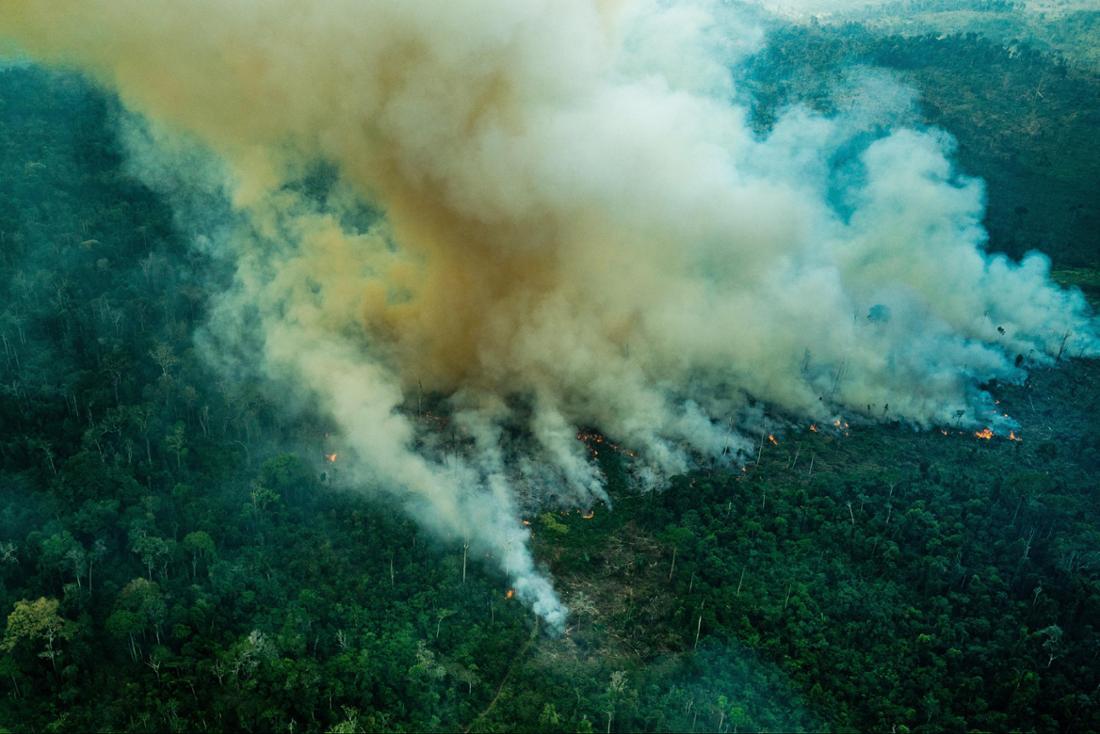 Eine riesige Rauchwolke steigt aus dem Wald im Schutzgebiet Cachoeira Seca, Brasilien