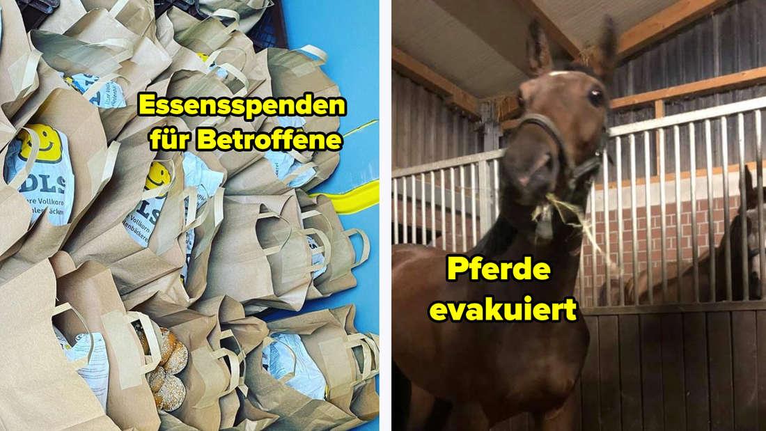Tüten voller Brot, Brötchen und Gebäck für die Betroffenen der Hochwasserkatastrophe. Text: Essenspenden für Betroffene. Daneben ein Bild von zwei Pferden in einem Stall. Text: Pferde evakuiert.