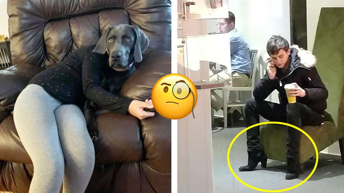 Ein Hund, der so auf einem Menschen liegt, dass es aussieht als wäre er der Kopf und ein Mann, der so auf einem Stuhl sitzt, dass es aussieht als wären die Stuhlbeine eigentlich High-Heels die er trägt.