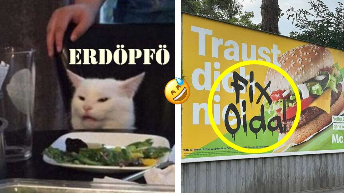 Zwei Memes, die Österreich so ziemlich perfekt beschreiben.