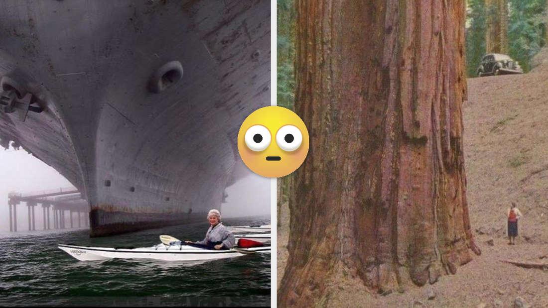 Eine alte Dame, die in einem Kanu an einem riesigen Kriegsschiff vorbeipadelt. Eine Frau neben einem Mammutbaum.